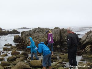 At the scattering rocks